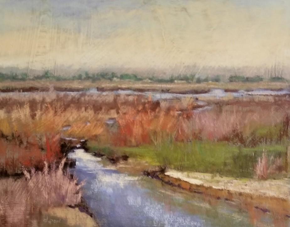 Santa Clara Wetlands
